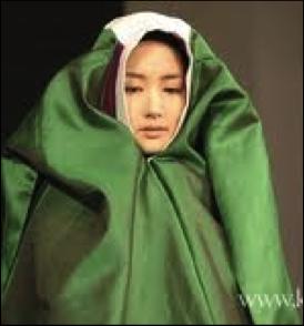 korean cloak